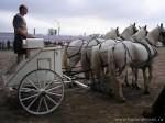 Какими были античные колесницы?