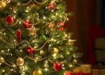 Как дольше сохранить новогоднюю елку?
