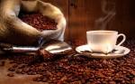 Кофе: пить или не пить?
