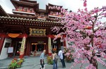 Старый Новый год в Китае или же Праздник Весны